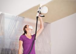 Wall Sprayer W 450 EUR - 3